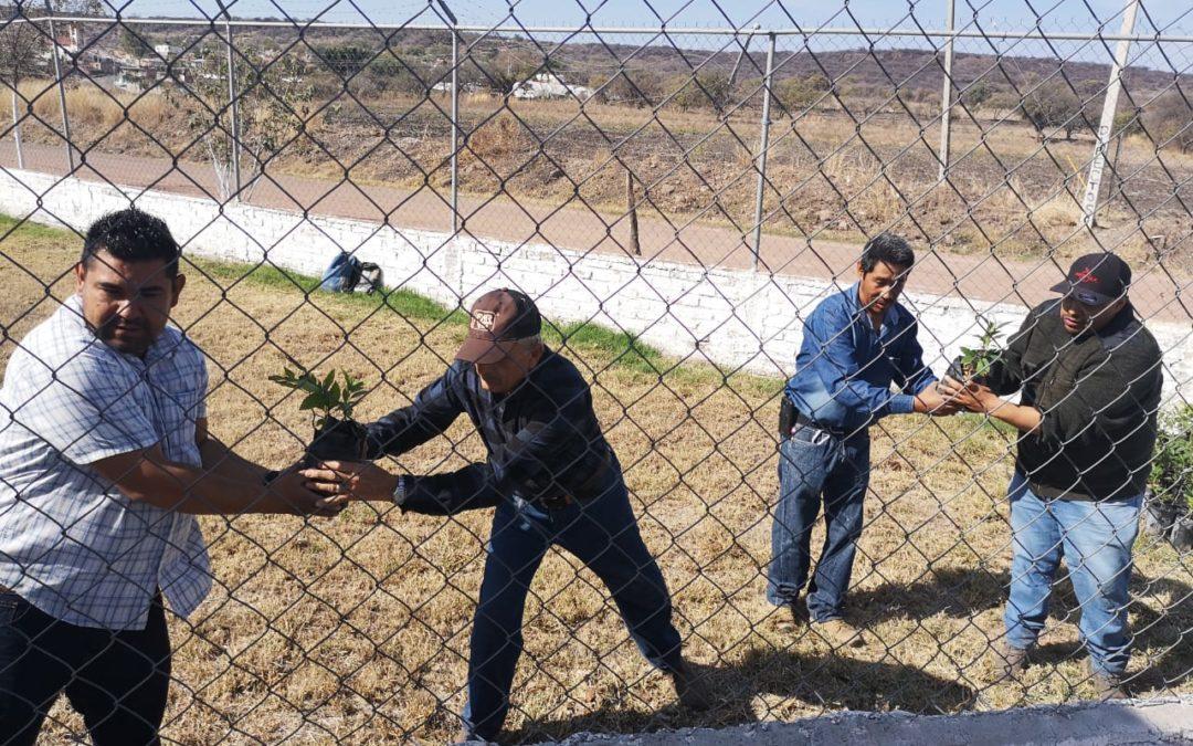 ENTREGARÁ FOMENTO AGROPECUARIO 15 MIL ÁRBOLES DE LA FUNDACIÓN GRUPO MÉXICO