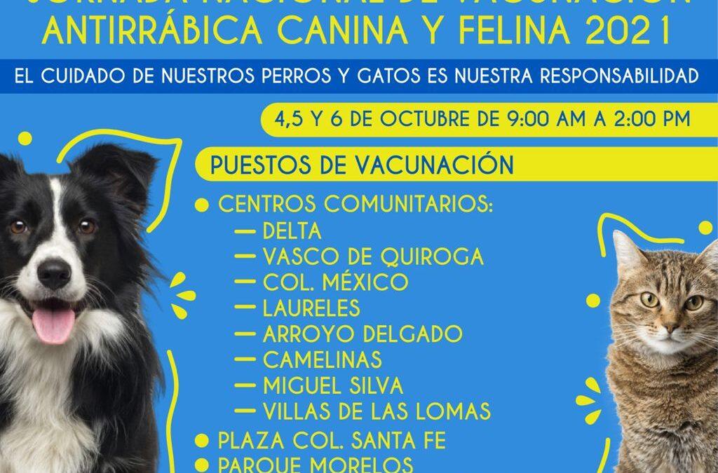 INVITAN A JORNADA DE VACUNACIÓN ANTIRRÁBICA EN EL MUNICIPIO
